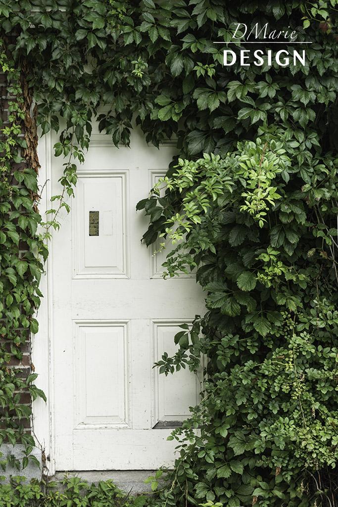 DOOR-CAMDEN_4771